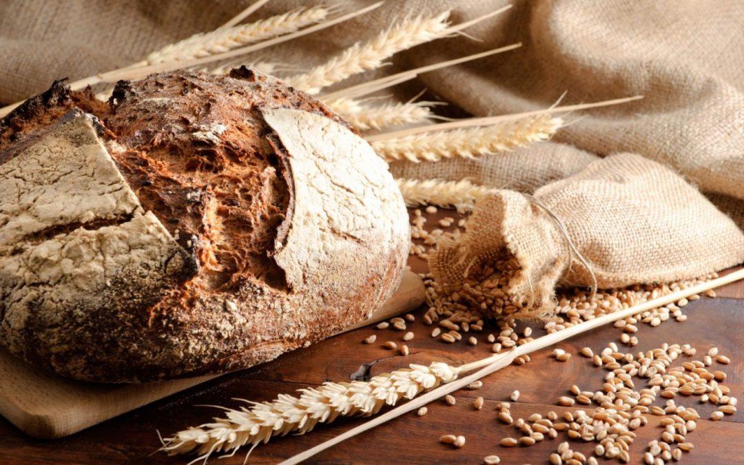 Pane e Farine Integrali